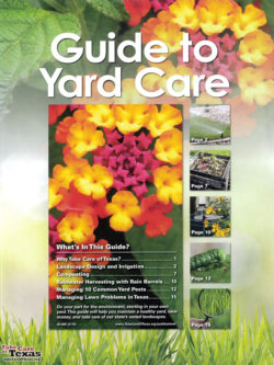 Guide to Yard Care